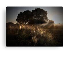 Sunrise Vignette Canvas Print