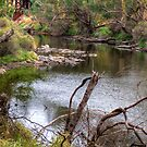 Blackwood at the Ford, Bridgetown, W. Australia by Elaine Teague