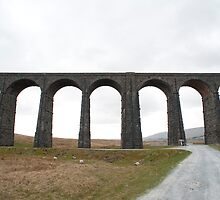 Ribblehead Railway viaduct by photoeverywhere