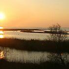 Sunset in Po Delta - Italy by chiaraSibona