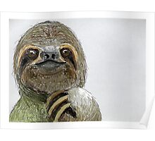 Sydney The Three-Toed Sloth Poster