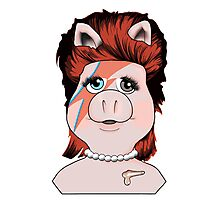 Piggy Stardust Photographic Print