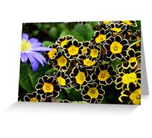Bee Flowers in Black and Yellow Greeting Card