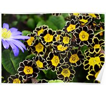 Bee Flowers in Black and Yellow Poster