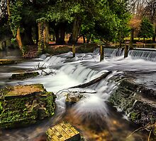 Kearsney Abbey Waterfall.  by Ian Hufton