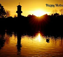 Roath Park Mother's Day Card by Paula J James