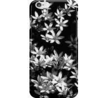 Wish Upon A Star iPhone Case/Skin