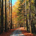 AUTUMN FROM THE ROAD by Chuck Wickham