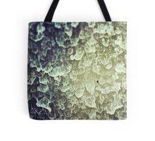 Window Rain  Tote Bag