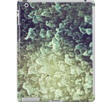 Window Rain  iPad Case/Skin