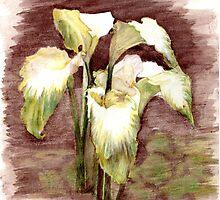 Green Goddess Calla Lilies by Linda Ginn Art