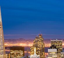 san francisco buildings by night by photoeverywhere