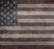 The United States of America Flag, Authentic 10:19 G-spec for government spec's Desaturated version by Bruiserstang