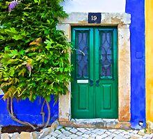 Door Number Nineteen by David Letts