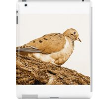 Dove iPad Case/Skin