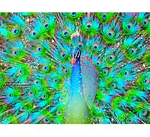 Light From Within (Neon Peacock) Photographic Print