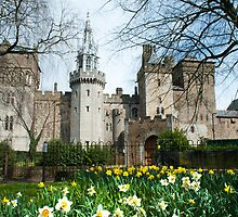 cardiff castle apartments by photoeverywhere