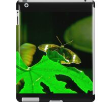 AMNH Butterfly iPad Case/Skin