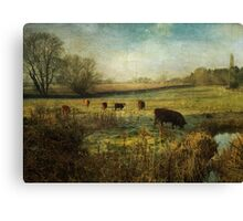 Cows in the Early Morning Canvas Print