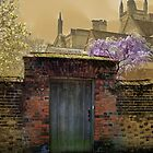 Old Door Winchester by hootonles