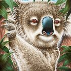 Koala Hugging a Tree by Lorna Mulligan