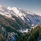 Valley in South Tirol by wulfman65