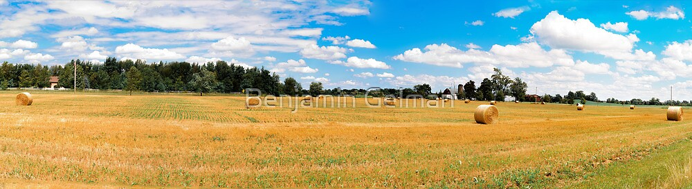Panorama_Mown field by Benjamin Gelman