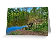 Bench near the broken willow by the rive Greeting Card