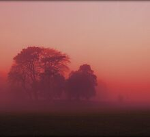Crimson Fog by Ross Jones