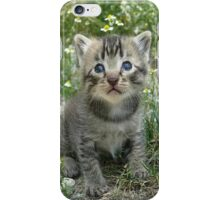 Sweet Cat Cover iPhone Case/Skin