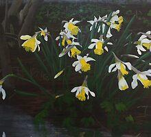 Pseudonarcissus by Jesse Waugh