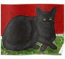 Black Cat Relaxing Poster