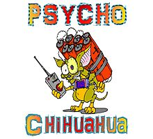Psycho  Chihuahua Photographic Print