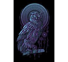 Owl Nouveau Photographic Print