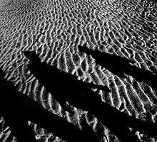 Shadows on the beach by mkurec