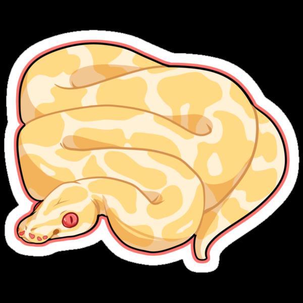 Albino Ball Python by cargorabbit