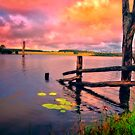 Dawn at Gordonbrook by Tracie Louise