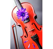 Artistic Poetic Violin Photographic Print