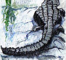 Florida Alligator by Carole Chapla