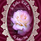 Mothers Day Rose by judygal