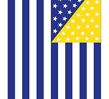 US Flag Bosnia by viixiigfl
