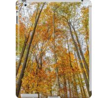 Reach High and Touch the Sky iPad Case/Skin
