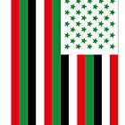 US Flag Iraq by viixiigfl