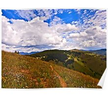 """Vail Mountain Trail"" Vail, Colorado Poster"