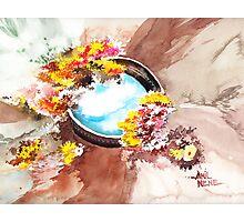 Flowers n sky Photographic Print