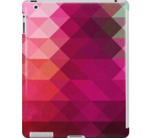Three Way Retro iPad Case/Skin