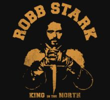 Game of Thrones Robb Stark by nofixedaddress