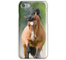 bay stallion in dust iPhone Case/Skin