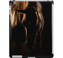 horse in sunset light iPad Case/Skin