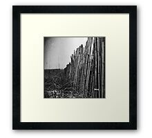 Quiescence Framed Print